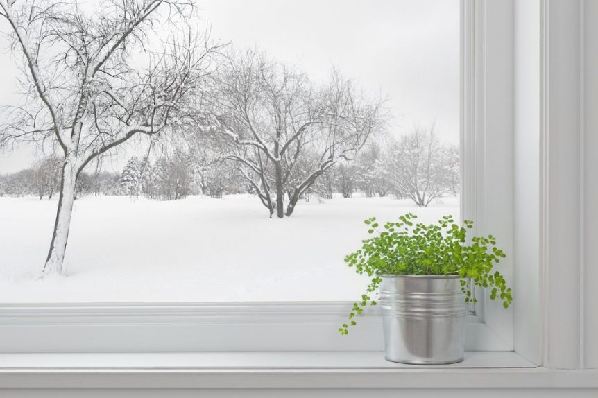 winter scene through window